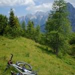 Assisted biking