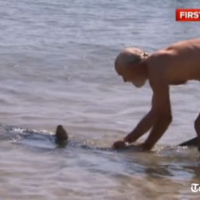 Old Brit wrestles shark, saves children